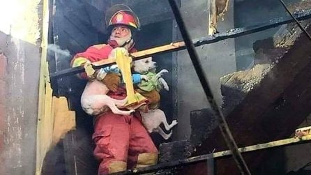 Vigile del fuoco eroe: entra nell'abitazione divorata dalle fiamme per salvare tre cani
