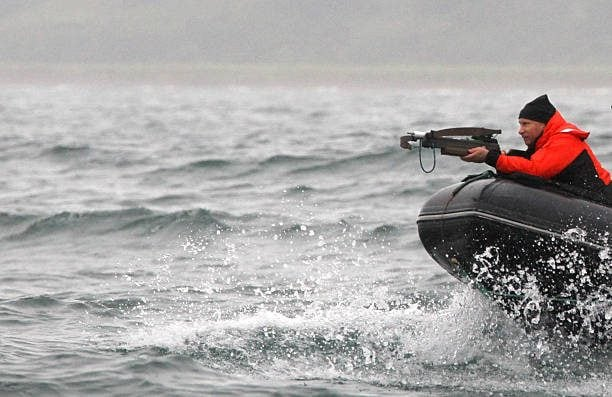 Il presidente russo Vladimir Putin va in caccia dello squalo nell'agosto del 2010