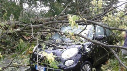 Maltempo, tromba d'aria nel Cremasco: a Sergnano inondazioni, tetti scoperchiati e alberi abbattuti