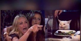 I meme di Woman Yelling at a Cat