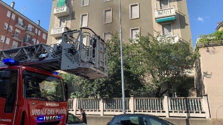 Milano, incendio in appartamento: il cane solo in casa salta dalla finestra e si salva