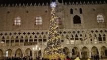Venezia, dopo l'acqua alta: l'albero di Natale a San Marco