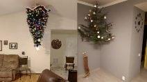 """""""Geni"""" che hanno trovato il modo di salvare gli alberi di Natale dai loro animali domestici"""