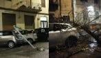 Maltempo, alberi e pali divelti a Palermo: le immagini del disastro