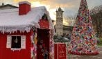 Parma, duemila mattonelle all'uncinetto: l'albero che unisce la comunità