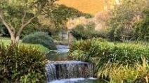 """Lo splendido paesaggio del """"Giardino di Ninfa"""": un gioiello tra Norma e Sermoneta"""