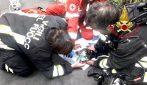 Sesto San Giovanni, vigili del fuoco rianimano gatto svenuto durante un incendio in casa
