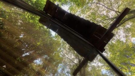La casa che galleggia tra gli alberi