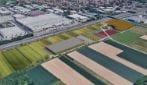 Ecco come è fatta la più grande vertical farm d'Europa