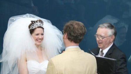 """Gli sposi sono pronti al """"sì"""": una balenottera interrompe il momento"""