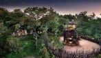 Nella casa sull'albero tra leoni ed elefanti in Sudafrica