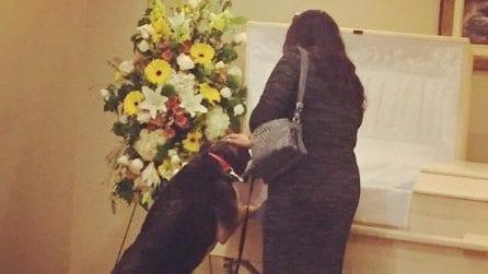 Durante il funerale di un uomo, il suo cane si avvicina alla bara per l'ultimo saluto