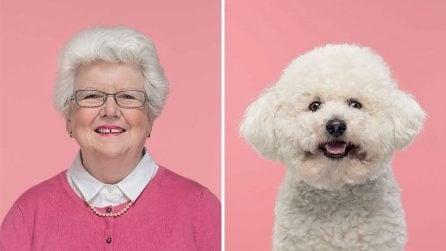 I cani somigliano ai loro padroni: queste foto lo dimostrano