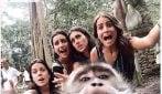 La scimmia ruba il cellulare e scatta un selfie con le turiste