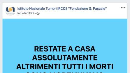 """Napoli, la Fondazione Pascale sui social: """"Restate a casa altrimenti le vittime sono morte invano"""""""