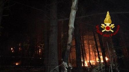 Serino, scoppia un vasto incendio nei boschi del Terminio