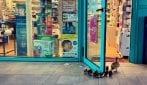 Strade deserte a Firenze, mamma anatra e i suoi anatroccoli entrano in una farmacia