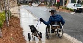 Nessuno lo voleva adottare perché disabile: un uomo in carrozzella lo ha preso con sè