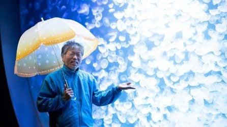 Gli ombrelli giapponesi che sembrano meduse sotto la pioggia