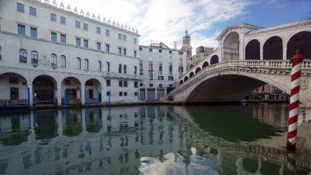 Venezia: le acque tornate pulite e piene di pesci