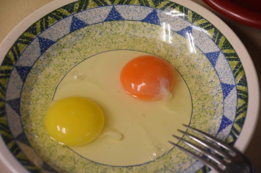Chalaza, la striscia bianca sull'uovo crudo: a cosa serve?