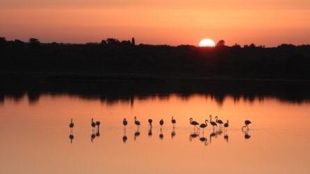 Uno scenario spettacolare: la salina si tinge di rosa all'alba