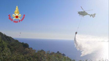 Ponza, vasto incendio sull'isola: distrutti due ettari di vegetazione