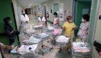 """Parti da record all'ospedale di Cremona: quindici bimbi nati in un solo giorno: """"È una rinascita"""""""