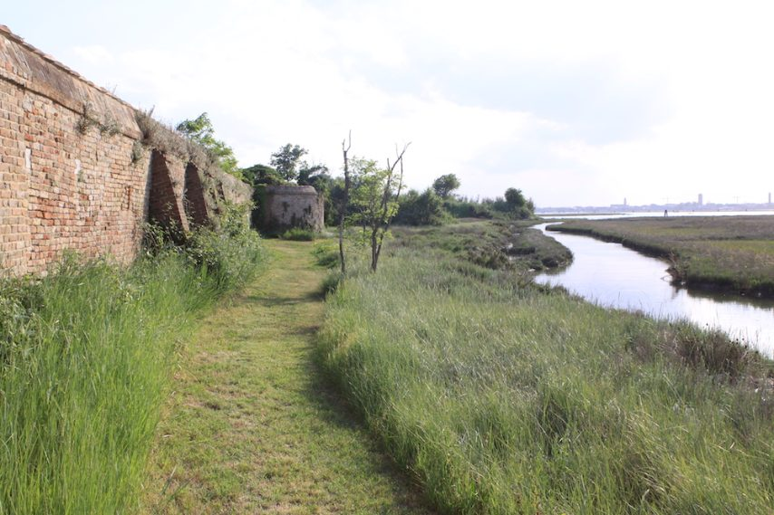 """Percorso naturalistico de """"Il sentiero delle Barene"""""""