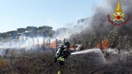 Fiamme e una nube di fumo a Castel Fusano: nove auto prendono fuoco