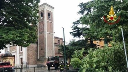 Nubifragio su Imola, alberi caduti e allagamenti