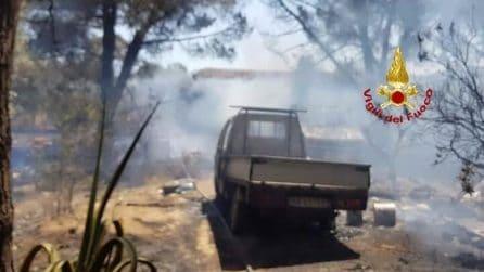 Sardegna, inferno di fuoco a Uta: è strage di animali