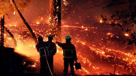 Francia, incendio in un bosco ad Anglet: distrutti più di 250 ettari di foresta