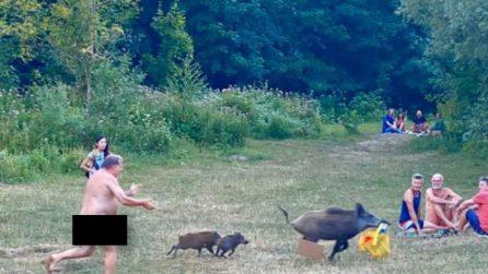 Scena surreale al parco: un uomo nudo rincorre un cinghiale che scappa con il suo computer