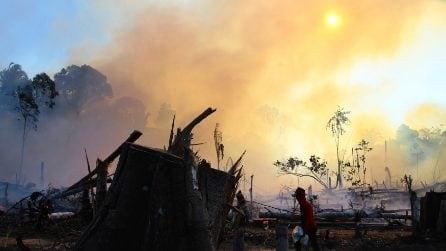 Brasile, l'Amazzonia continua a bruciar: le fiamme distruggono la foresta pluviale