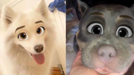 I cani diventano personaggi dei cartoni con questo filtro di Snapchat