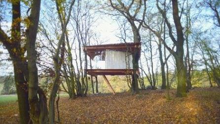 Una casa sospesa tra gli alberi su un pascolo di pecore