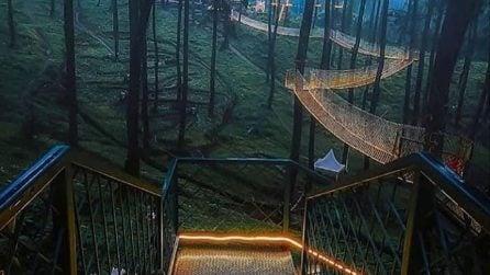 Il ponte magico sospeso nella foresta indonesiana