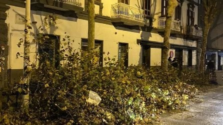 Al Vomero potati gli alberi, ma i rami restano a terra per giorni
