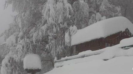Intensa nevicata sul Monte Livata: uno strato candido copre tutto