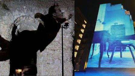 Roma, un museo a cielo aperto: percorso artistico con la light art