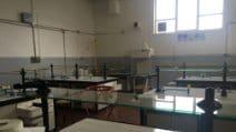 Eduscopio 2020, il Majorana di Somma Vesuviana miglior tecnico tecnologico della provincia di Napoli