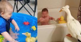 Sin da piccoli hanno fatto il bagnetto insieme: sono cresciuti e sono diventati inseparabili