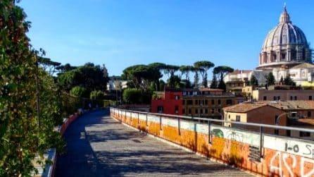 """Roma, la """"passeggiata del Gelsomino"""" che mostra la bellezza della Cupola da un'altra angolazione"""