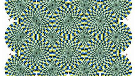 Guardate questa foto per qualche istante, dopo un po' fissate uno dei punti neri: scoprite cosa accade