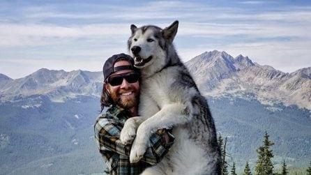 Vive incredibili avventure con il suo cane: non vuole tenerlo chiuso in appartamento