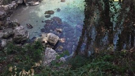 """""""Dietro casa mia c'è il paradiso"""", le bellissime immagini dei Bagni Regina Giovanna"""