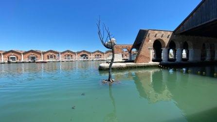 Il meglio in immagini della 17.Mostra Internazionale di Architettura - La Biennale di Venezia