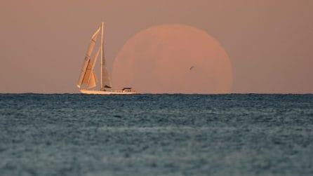 Luna piena ed eclissi totale, una giornata speciale per l'astronomia