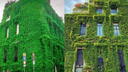 Milano, la suggestiva villa completamente coperta dal verde